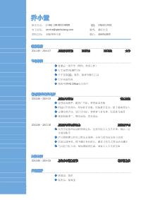 初级网络代表新黄金城网址(突出专业技能)