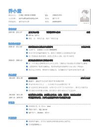软件技术支持岗位黄金城网址模板