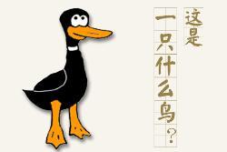 """""""鸭子理论"""":针对应聘岗位写简历"""